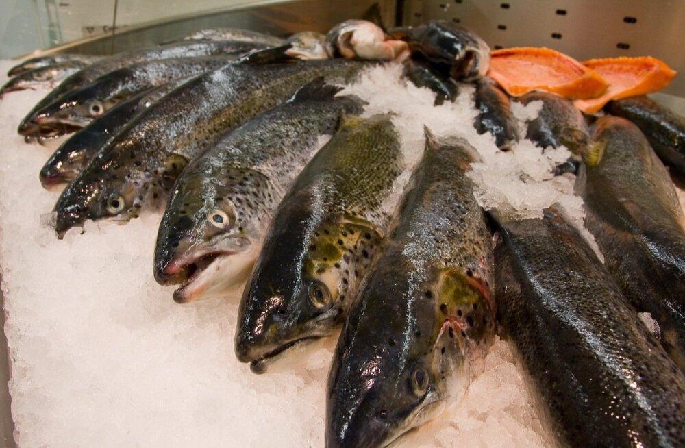 Turgude kalamüüjad ei ole jaekettide hinnaralliga kaasa läinud.