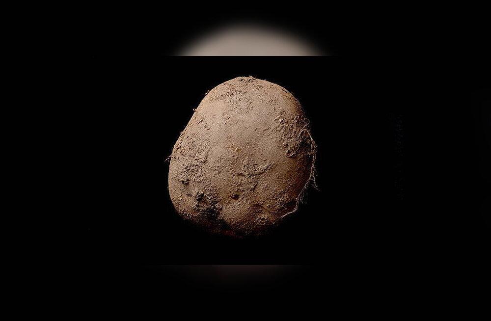 See kartulifoto müüdi hiljuti miljoni dollari eest