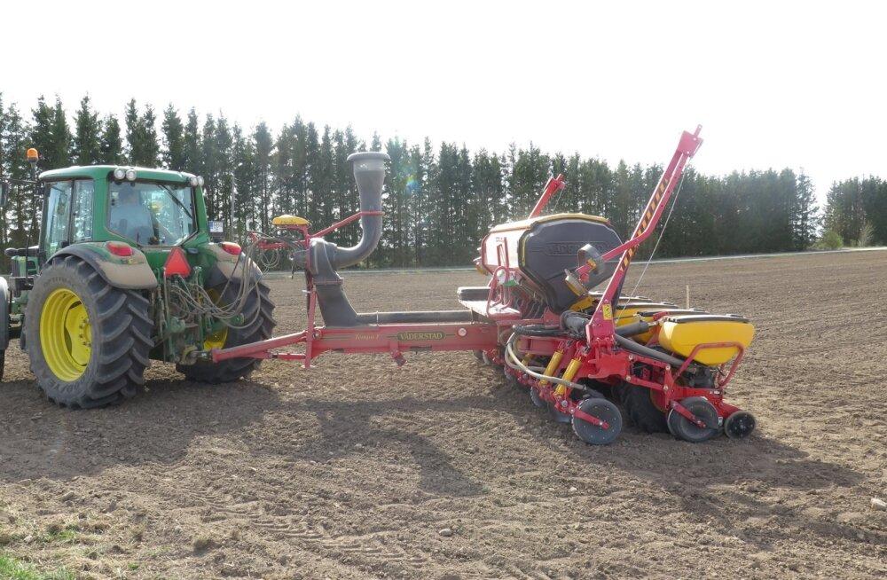 Eestimaal käib maisikülv.