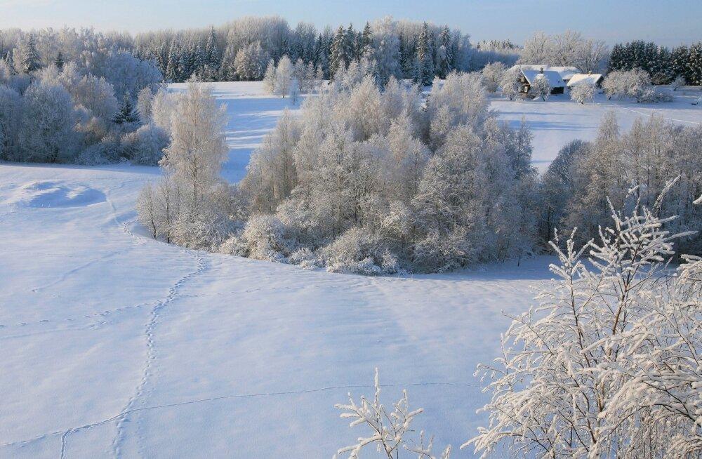Klassikaline vaade talvisele Haanjamaa talumaastikule.