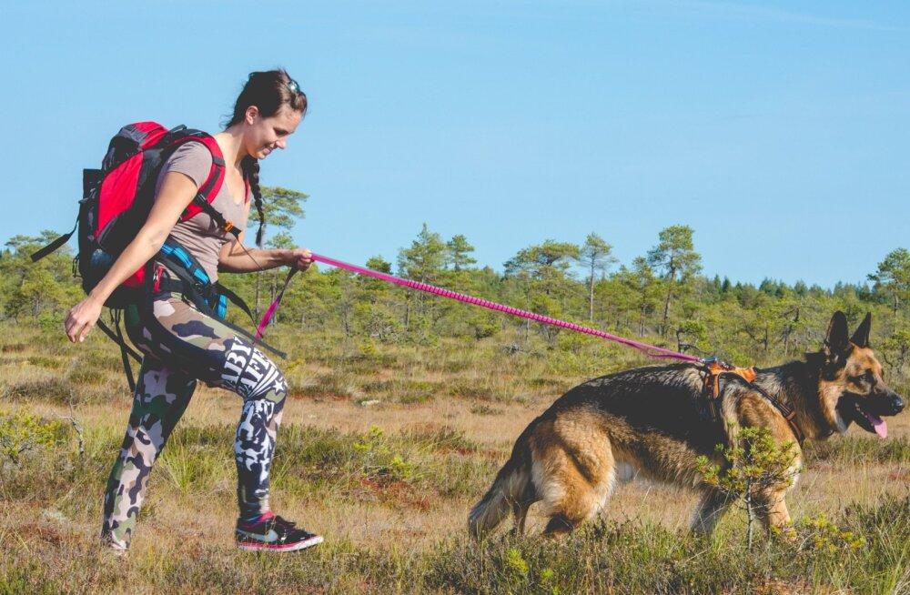 Koerakoolitaja Kati Ernits: Koer läheb omaniku nägu. Miks ja kuidas?