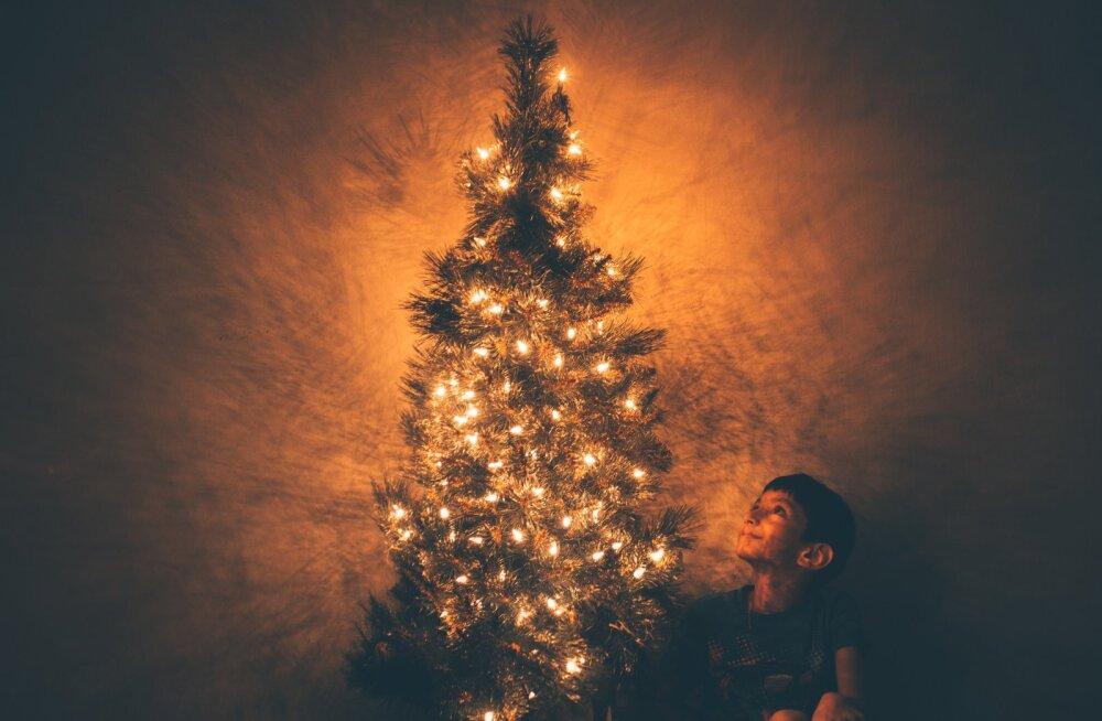 FOTOKONKURSS | Jaga meiega pilti oma ehitud jõulukuusest ja võida ihaldusväärne komplekt Iittalalt!