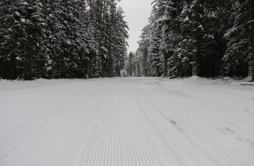 Tartu Maratoni rada pärast selle talve esimest pressimist. Pilt on tehtud Paluveskil.
