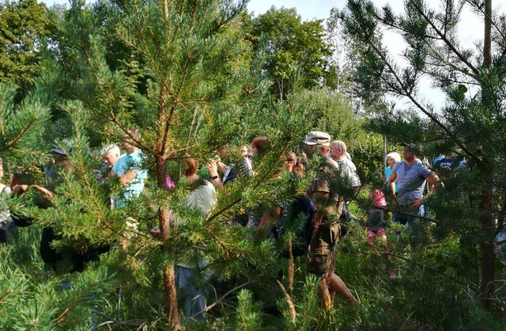 Sotsioloogi sõnul on rahva valmisolek metsakogus osalemiseks olemas. Sedasama näitab ju ka suur sotsiaalsete liikumiste ja protestide aktiivsus.