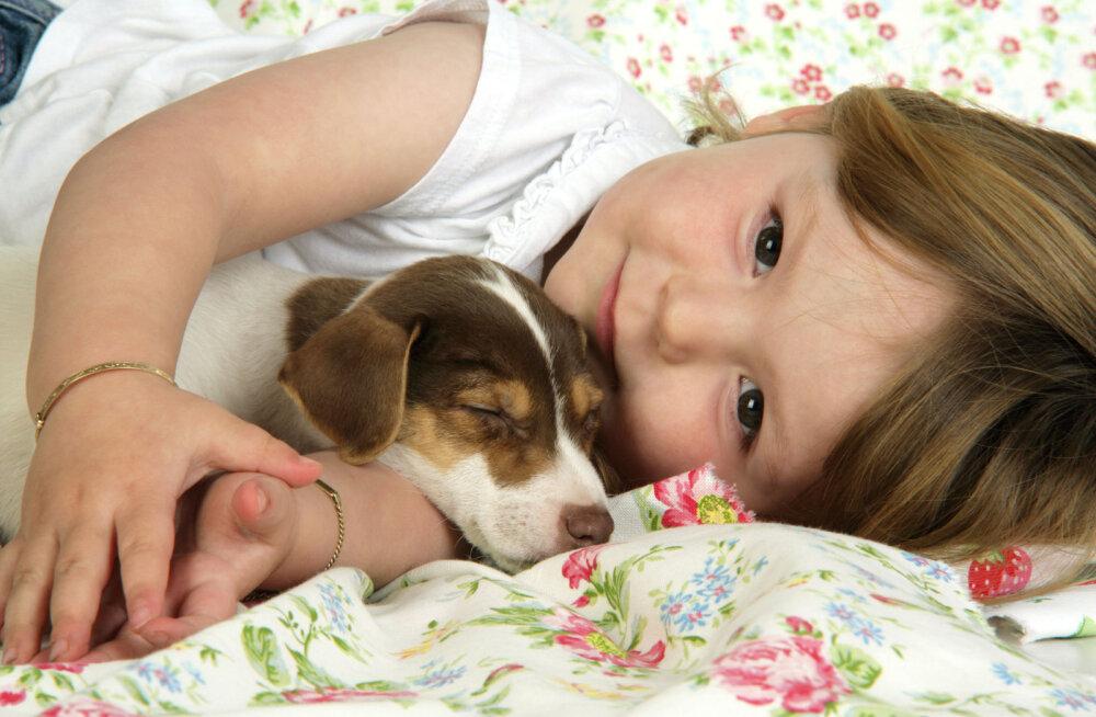 Домашние питомцы положительно влияют на развитие ребенка