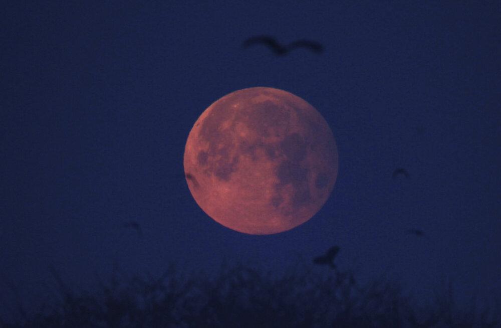 Kuu orbiidilt leiti ammu kaotsi läinud hindude kosmoseaparaat