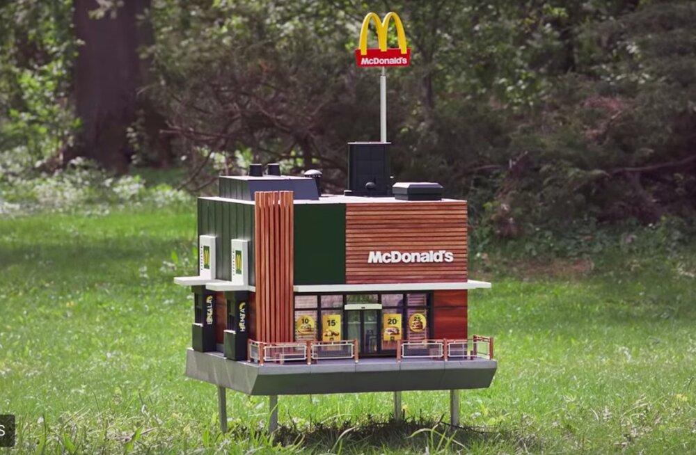 В Швеции построили McDonald's для пчел
