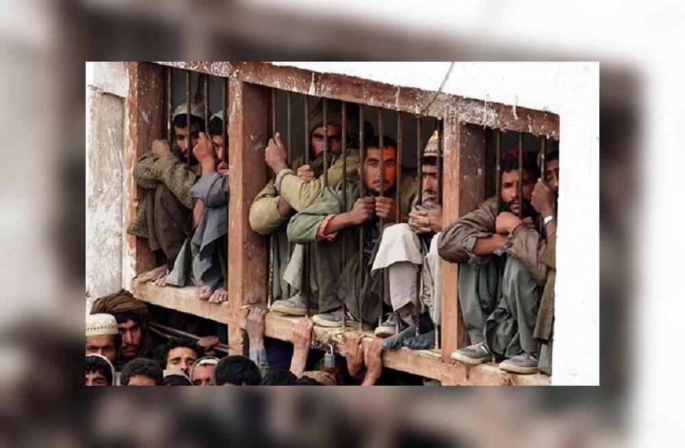 Туристов стали за деньги отправлять в индийскую тюрьму