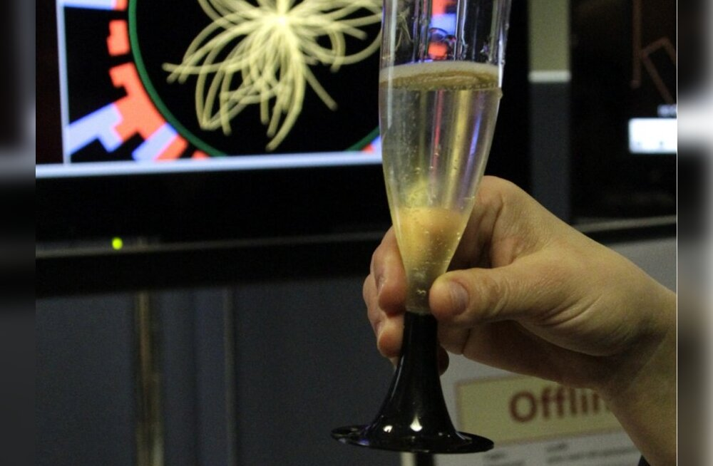 Ahvenamaal tõsteti merest 70 pudelit 200-aastast šampanjat