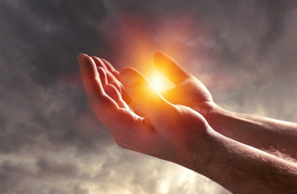 Jaan Tammsalu: pühadus paneb hoolima ja hoidma