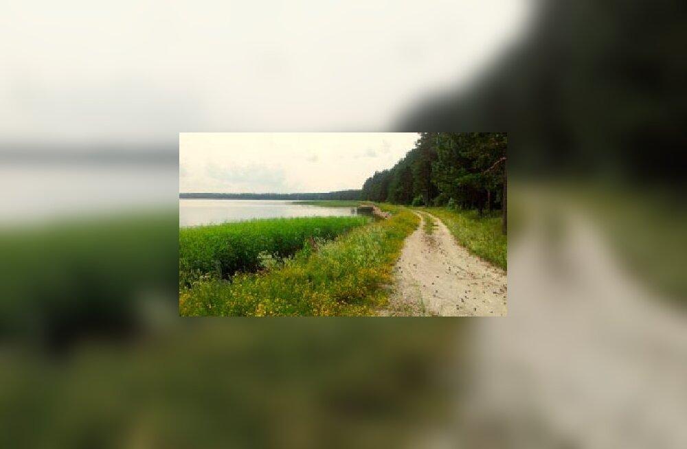 Peetri aleviku elanikud: Ülemiste järveäärse tee võiks inimestele avada