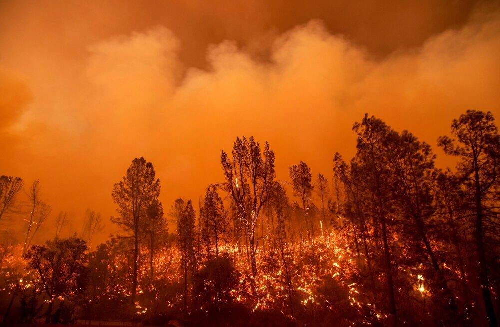 Californias hukkus maastikupõlengus üks inimene, tuli noolib 92 000 elanikuga linna