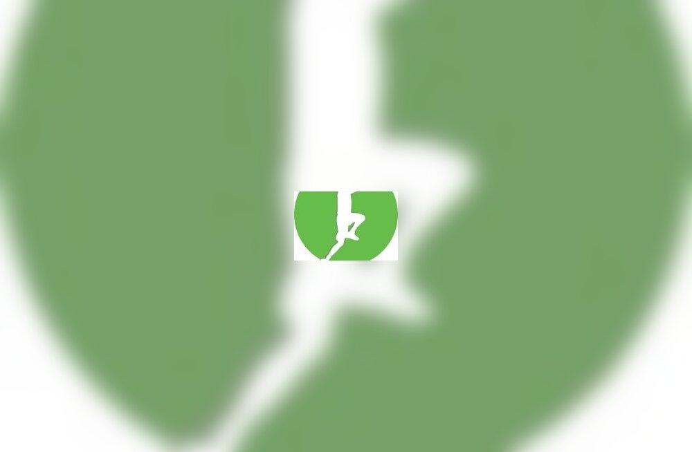 SEB korvpalli meistriliiga logo