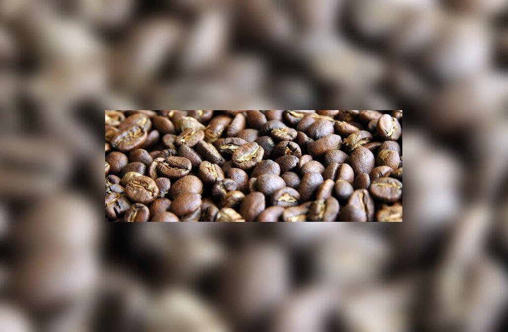 Kohviubade krõbistamine ja energiajoogi kulistamine on ajutine lahendus