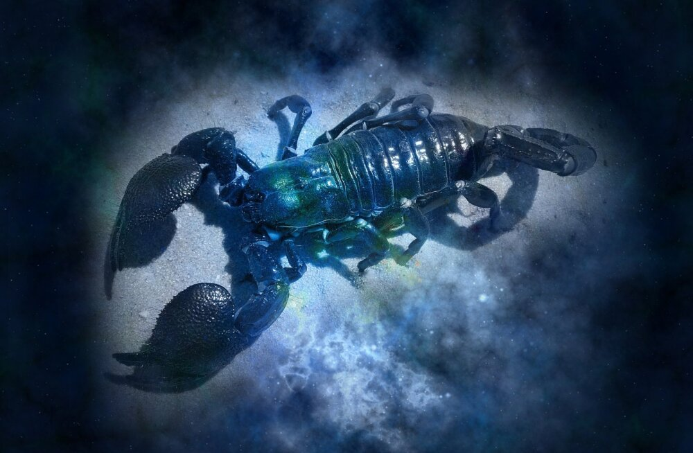 Павел Глоба назвал три знака зодиака, которым не страшен коронавирус
