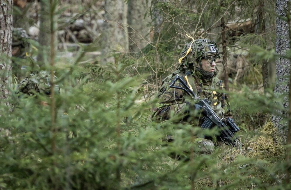 Ajakirjast Sõdur: kuidas metsa tundma õppida, et seal lahinguplaani koostada