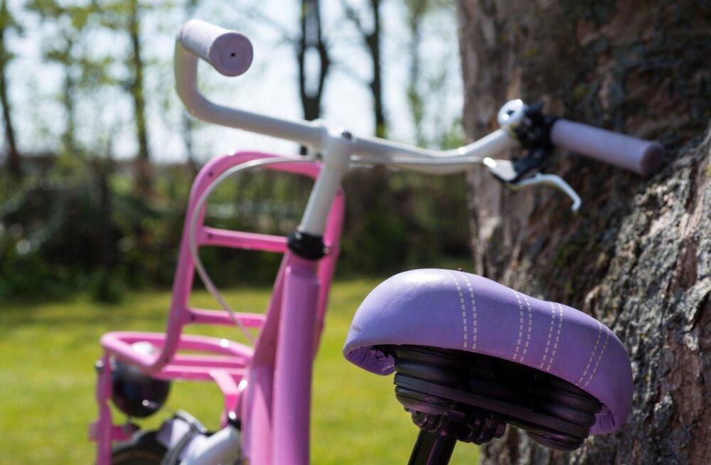 Mul on kevad südames… ja jalgratas hooajaks valmis
