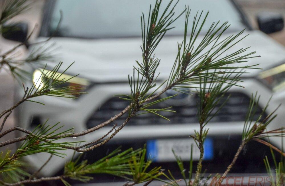 Võrdluses mudelite TOP 10: eestlaste automaitse on naabrite omast rafineeritum