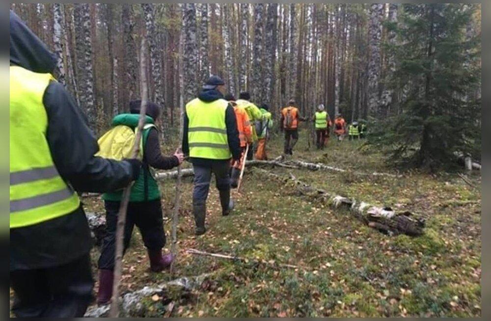 Родственники и добровольцы продолжают поиски пропавшего 26 сентября в лесах Причудья Ивана Федоровича. Им очень нужна помощь