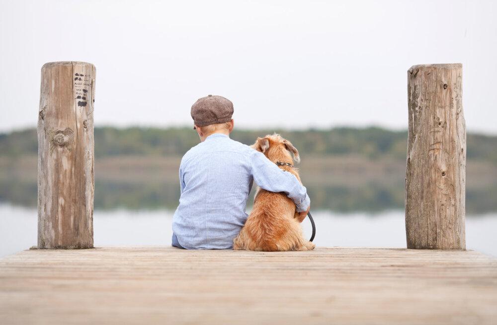Tõeline pisarakiskuja: perekond võimaldas raske haigusega maadlevale koerale enne lõppu elu parima nädalavahetuse