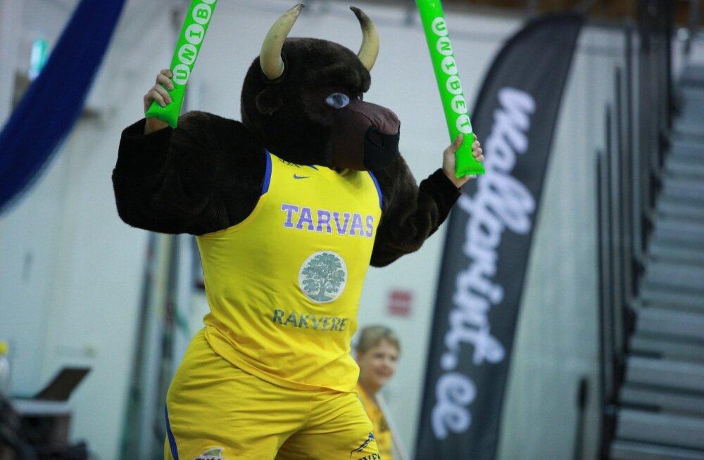 Rakvere Tarva maskott