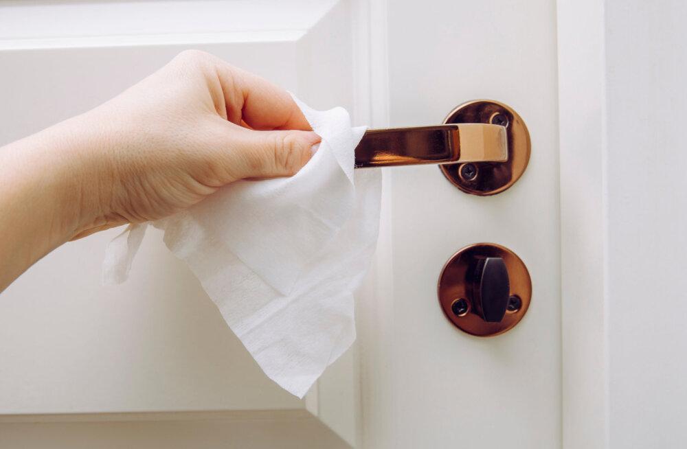 On üks tegevus, mida peaks praegusel viiruseperioodil iga päev kodus tegema