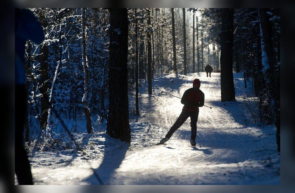 Suusatajad rahvusvahelisel lumepäeval Järve terviserajal