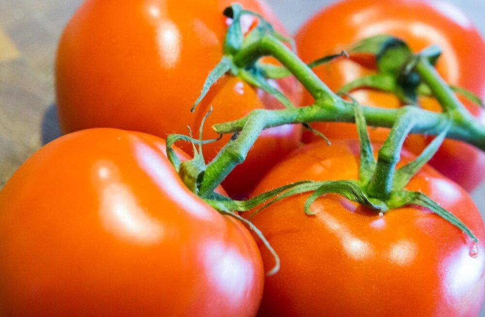 Enne kui uut sorti aretama hakatakse, tuleb mõelda eesmärgile. Muude kõrval on tagaplaanile jäänud üks toidu olulisimaid omadusi: maitse.