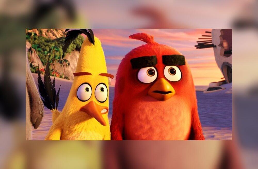 """ARVUSTUS: """"Angry Birds: Kurjad linnud. Film"""" pakub humoorikat viharavi nii suurtele kui väikestele"""