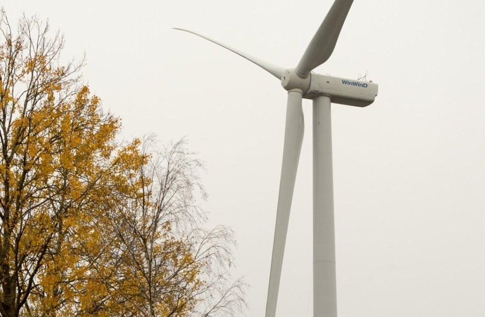 Vallavanem riigikohtu otsusest: tuulikuid lammutama ei hakata