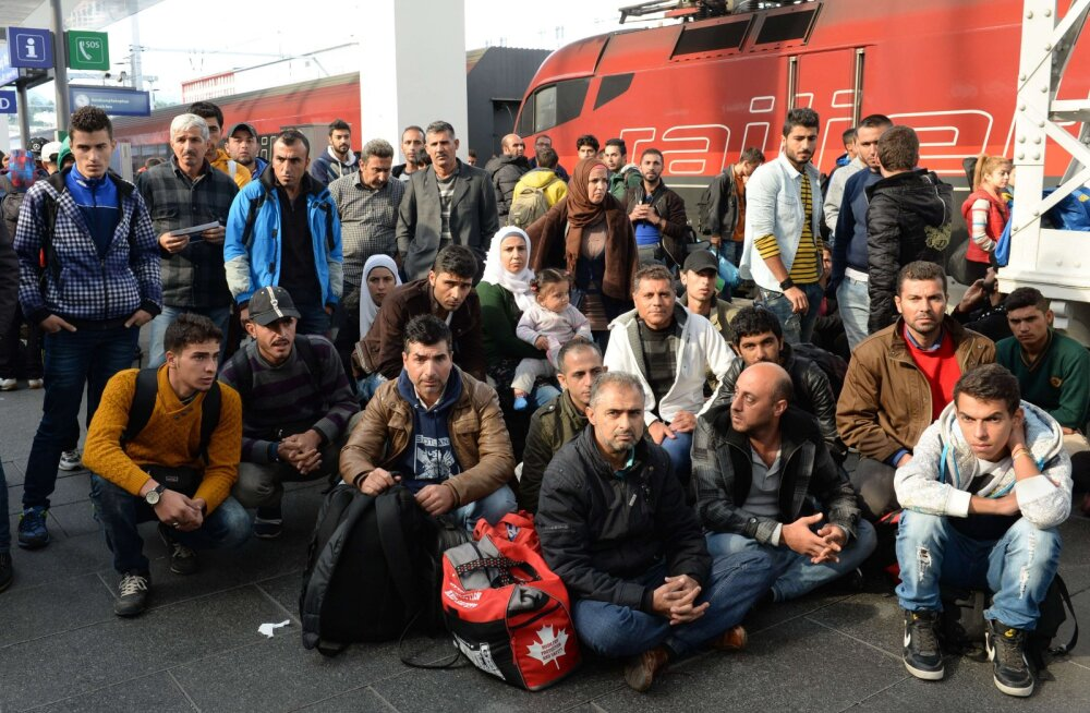 Keskpanga asepresident: immigrandid päästaksid Euroopa demograafilisest suitsiidist