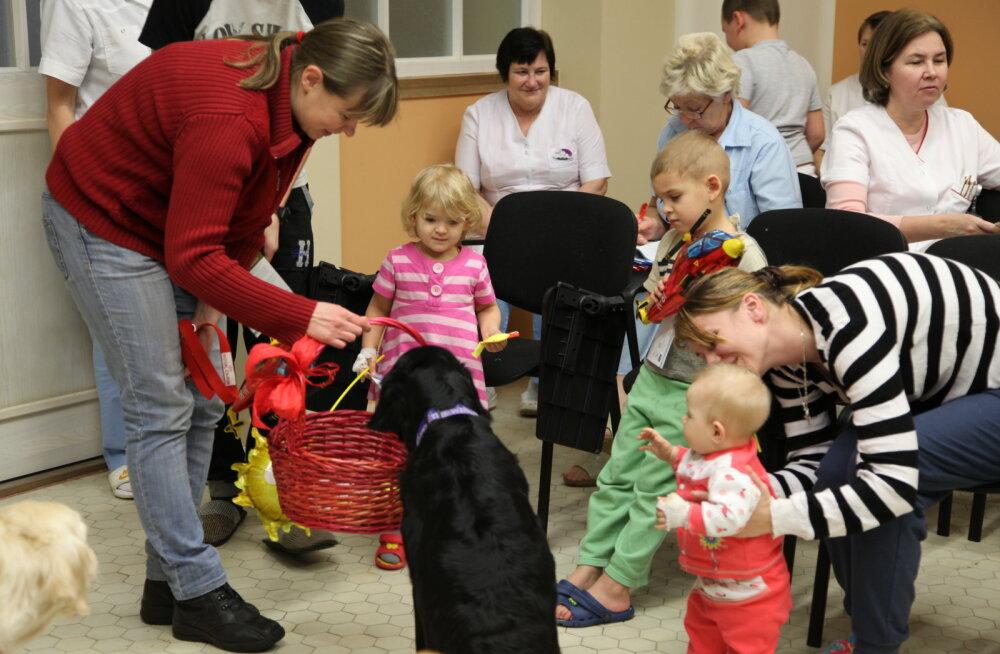 Терапевтические собаки будут посещать детей в Нарвской больнице