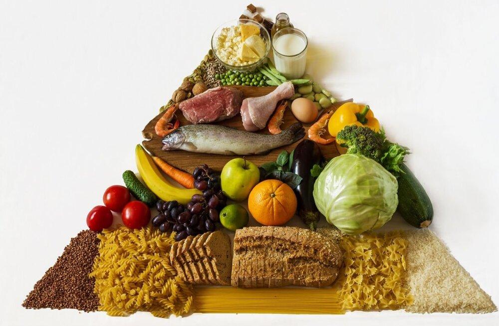 Tervisliku toitumise võti ei peitu vältimises vaid tasakaalus