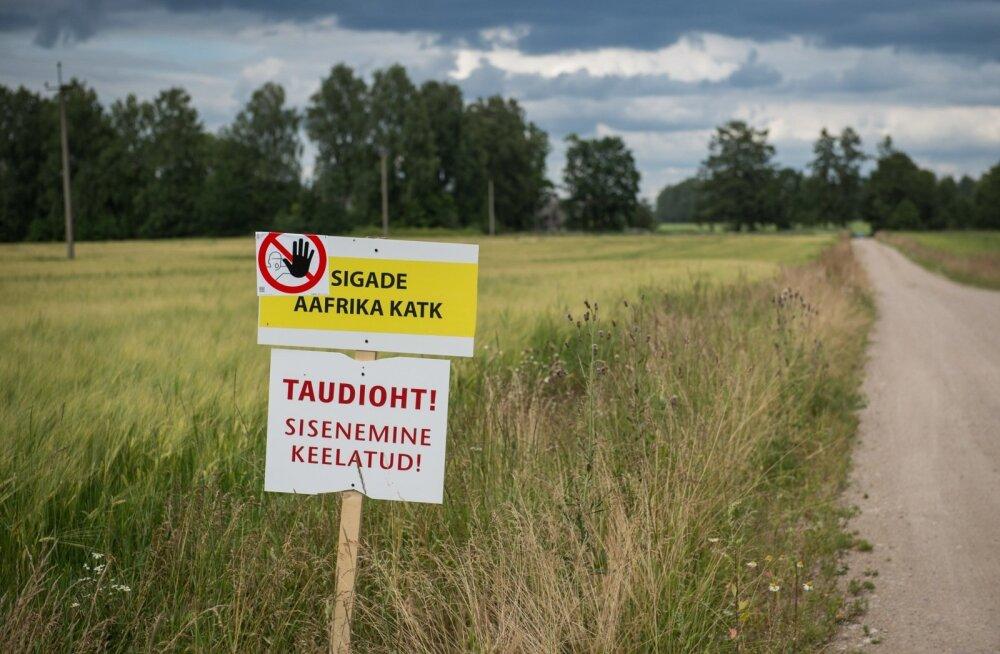 Leevendati seakatku tõttu kehtestatud kauplemispiiranguid