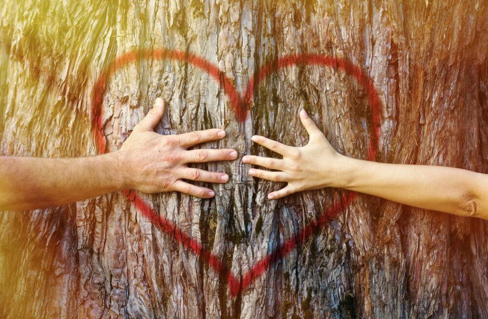 Teraapia - oma aeg ja oma tee oma südamesse
