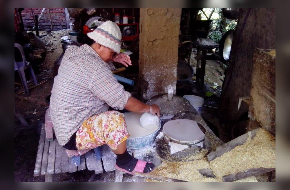 Reisikiri Kambodžast, 10. osa: riis, maod ja mädanenud kalast pasta khmeeri köögist
