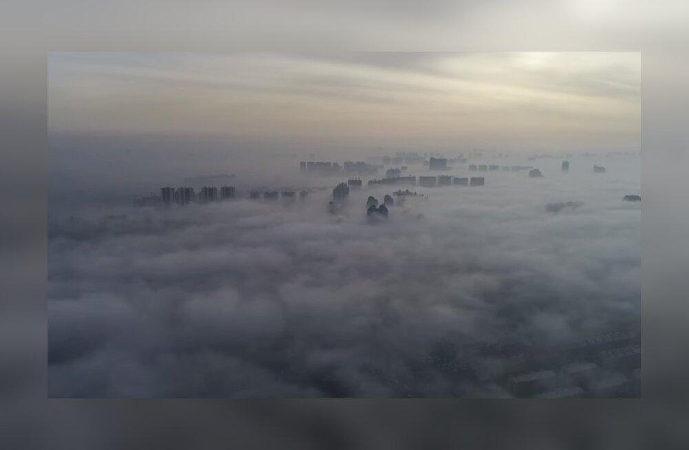 ВИДЕО: Туман превратил китайский город в сказку
