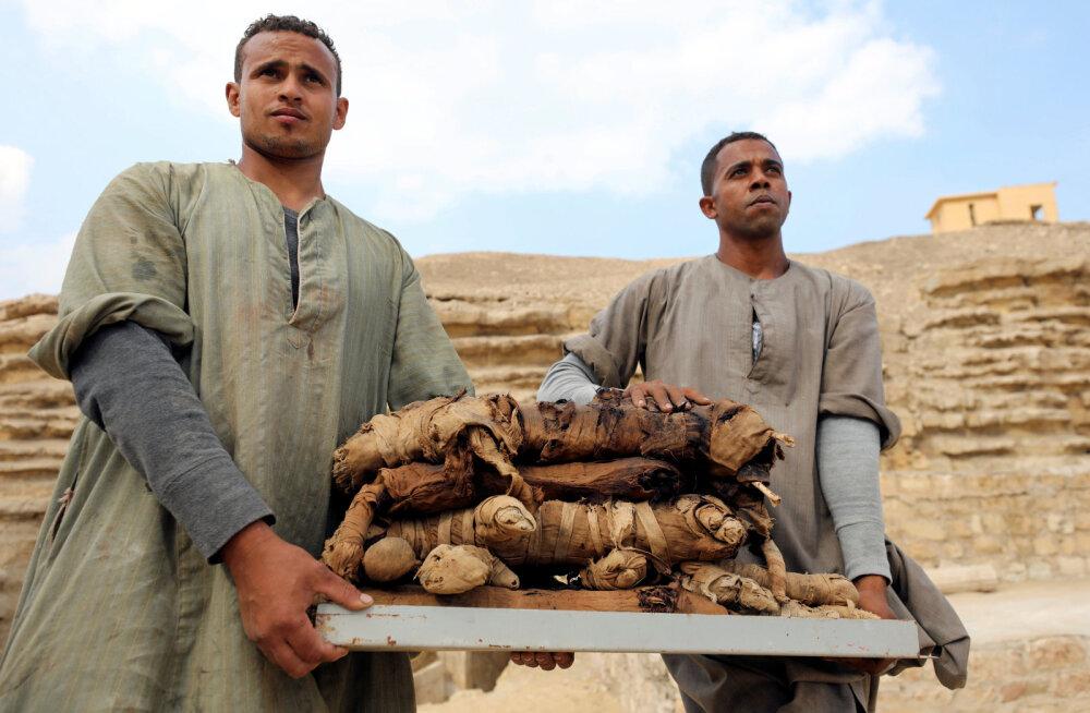 Egiptusest leiti terve hulk kassmuumiaid, kes olid tõenäoliselt kägistatud