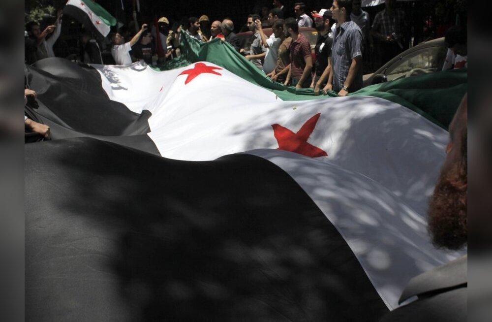 Süüria väed tapsid Hamas vähemalt 22 inimest