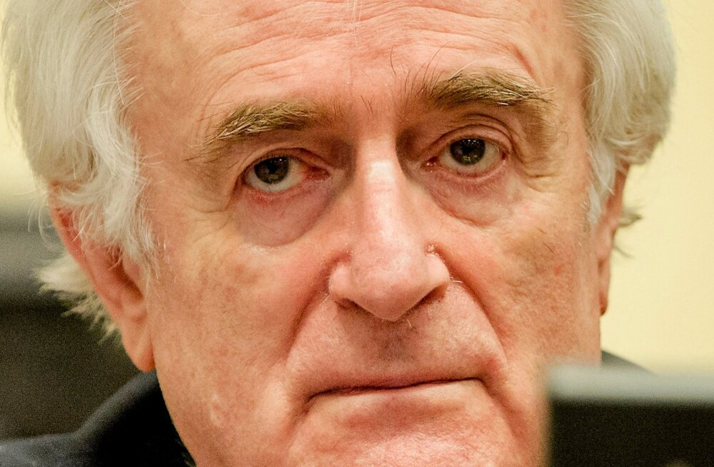 Netherlands War Crimes Karadzic