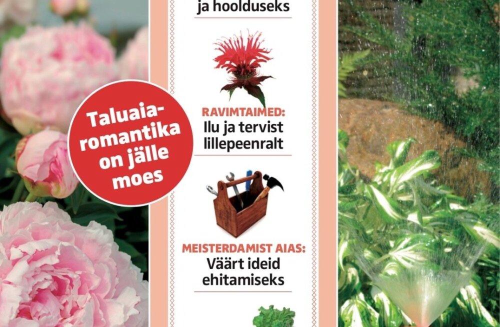 Targu Talita ajakirja suvenumber nüüd müügil