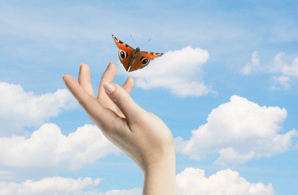Andestamise harjutus: õpi andeks andma ning loo nii endale rahulikum ja õnnelikum elu