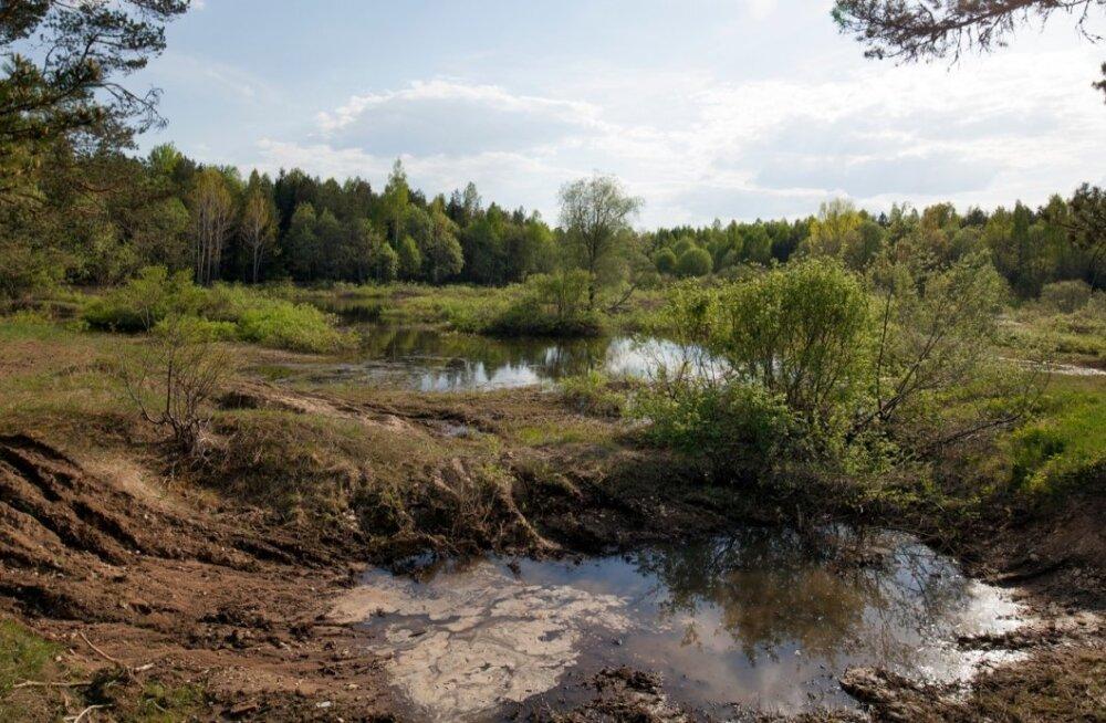 Raplamaal asuv Pihali uuringuruum,  karjäär, Rail Baltic, kaevandus