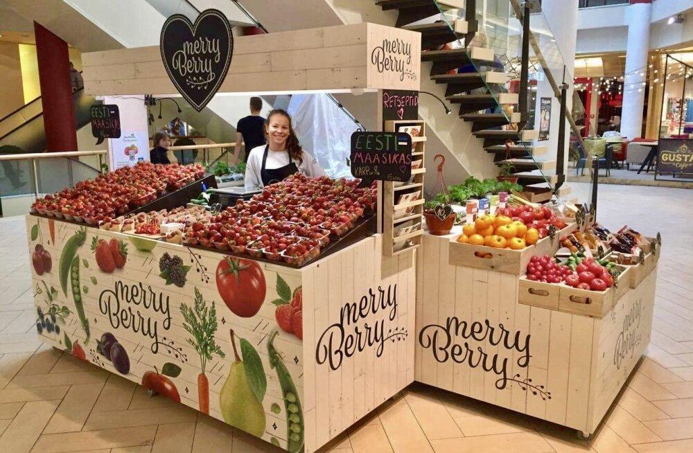 Müügile saabus eestimaine maasikas