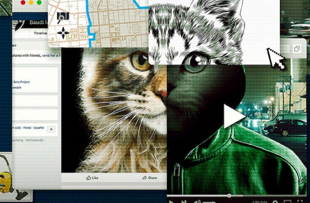 """Nädalavahetuse filmi- ja seriaalisoovitused: Netflixi """"Don't F**k With Cats: Hunting an Internet Killer"""" pole nõrganärvilistele"""