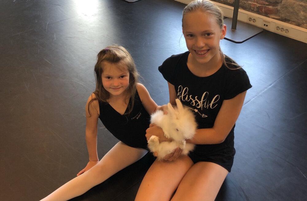 Saage tuttavaks: tantsukool, kus laste tantsusammudel hoiab silma peal ka vahva küülikutüdruk Lumi