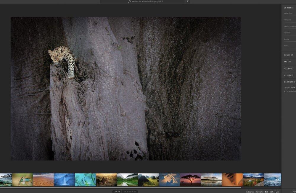 Adobe'i pilvepõhine fototöötlusrakendus lekkis kogemata veebi
