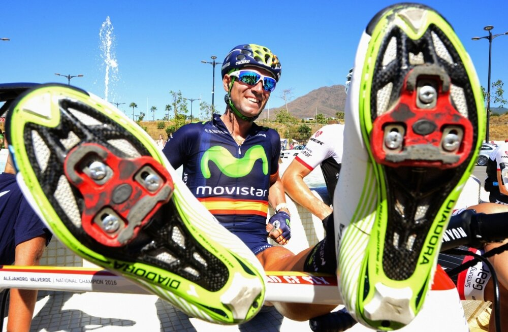 Movistari liider Alejandro Valverde jalgu sirutamas