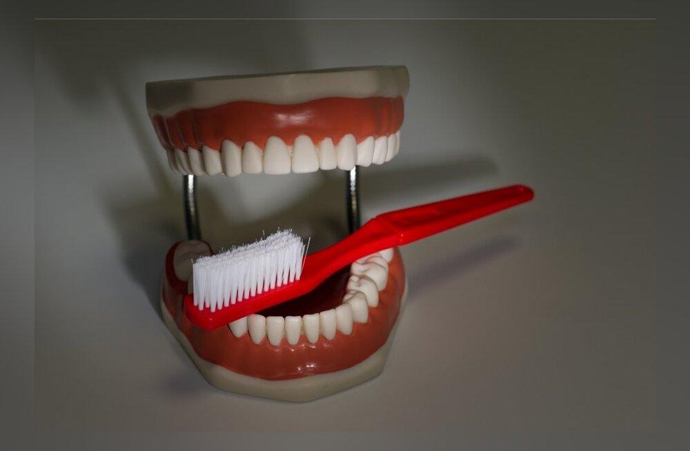 Износ зубов в течение жизни