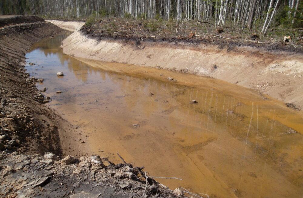 FOTOD | Purtse jõe puhastustööde käigus on rajatud üle 3 kilomeetri uut jõesängi